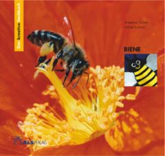 Das kreative Sachbuch 'Biene' Latorre, Sabine/Naber, Annerose 9783891351314