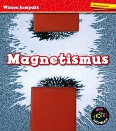 Magnetismus Royston, Angela 9789463410281